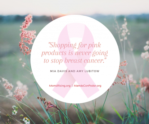 "[IMAGE DESCRIPTION: A graphic image with light pink flowery background and a circle in the foreground that reads, ""Shopping for pink products is never going to stop breast cancer.""]"