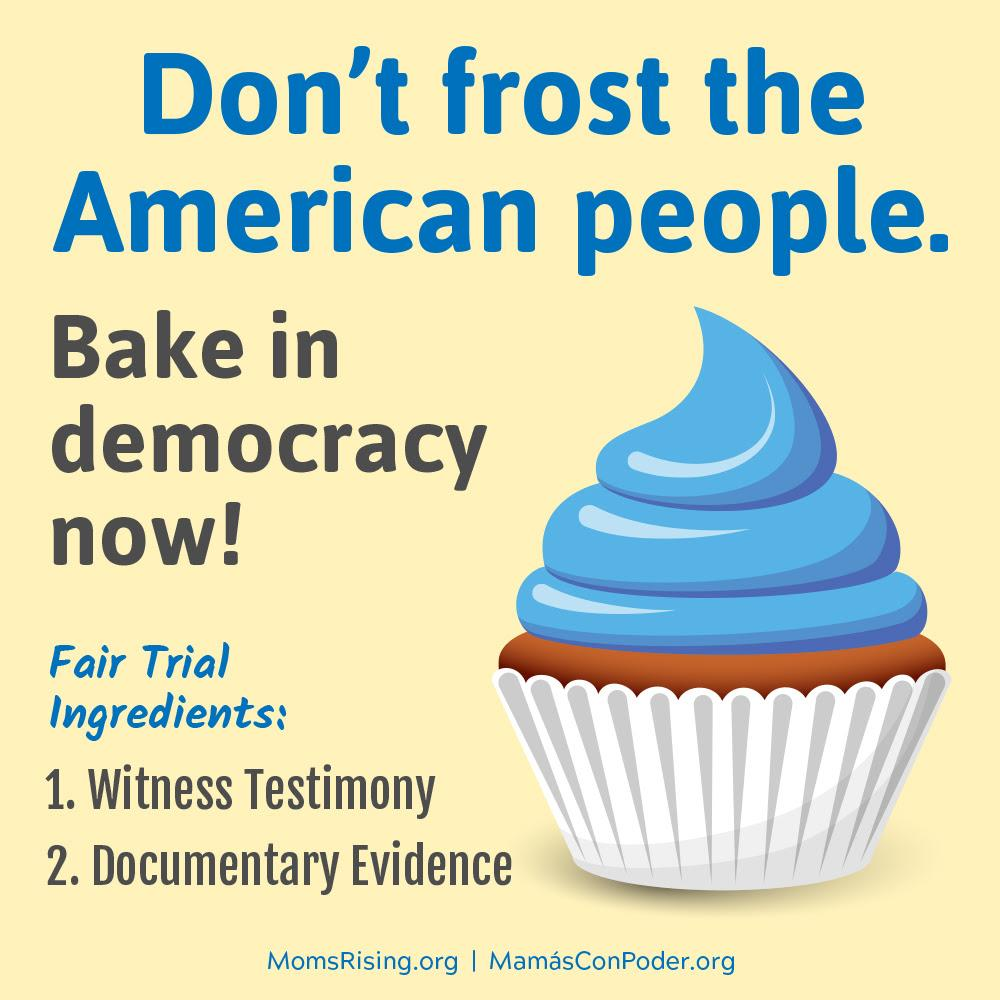 "[IMAGE DESCRIPTION: A colorful graphic image with a picture of a cupcake that says ""Don't frost the American people. Bake in democracy now!""]"