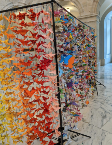[IMAGE DESCRIPTION: A photo of colorful paper butterflies hanging in Congress]