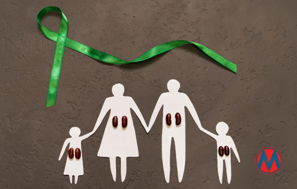Cut-out family with kidney beans as kidneys