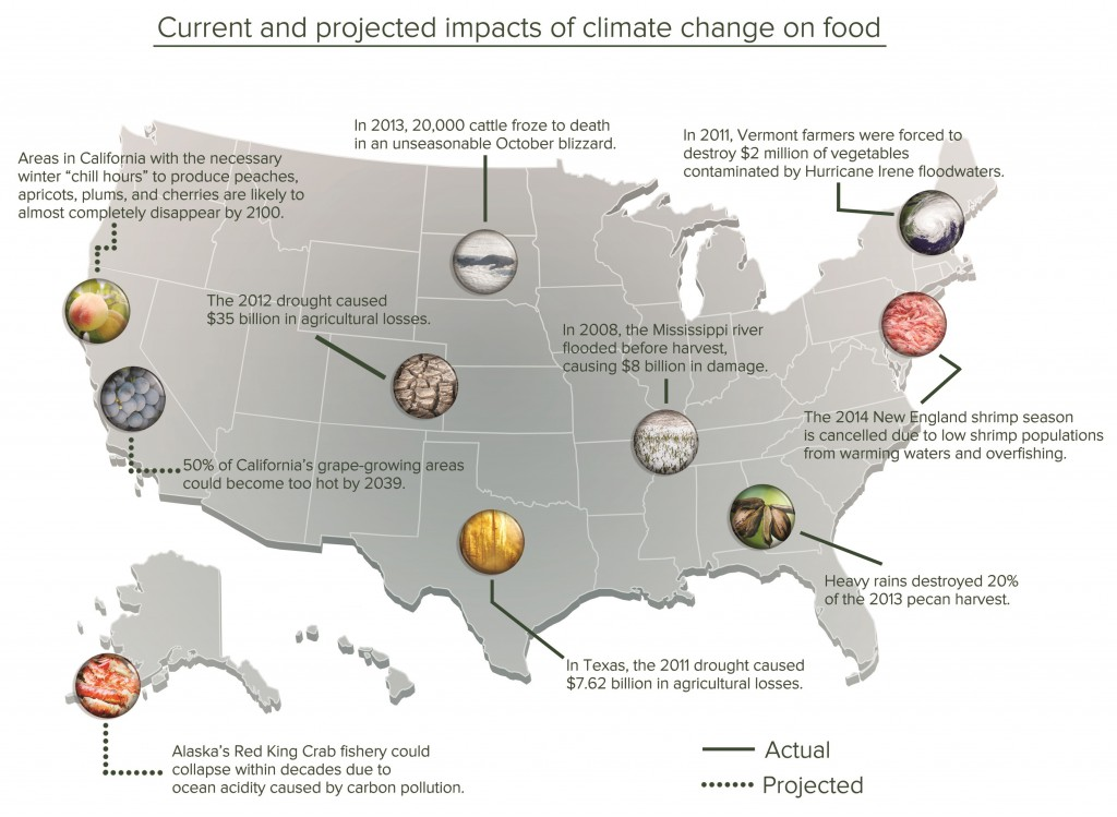 Current and projected impacts of climate change on food.